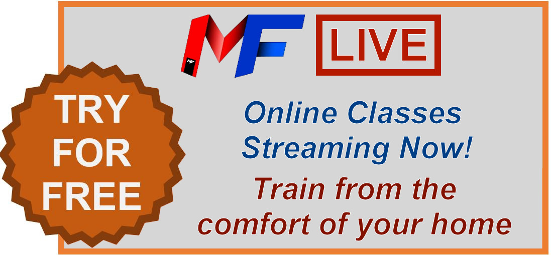 Live Streaming Martial Arts Classes